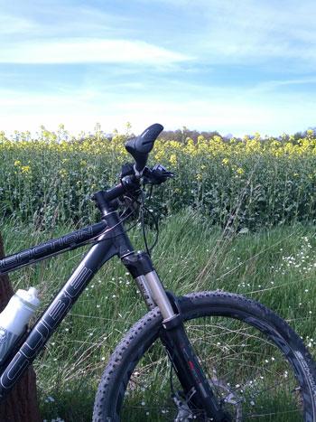 Mobil in den Frühling durch Bike in der Natur