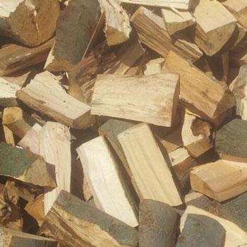 Fragen und Antworten zum Thema brennen mit Holz